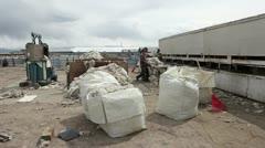 Sheep wool quality control sorting P HD 9674 Stock Footage