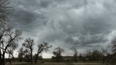 Storm Clouds over Trees Stock Footage