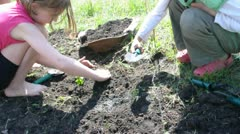 children watering digging and planting young  plants together - stock footage