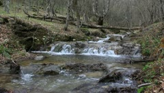 Rushing river in a spring forest Stock Footage