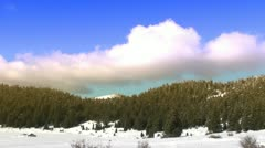 Clouds move fast above a fir forest - color 1 Stock Footage