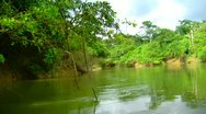 Stock Video Footage of Sailing on a river in a rainforest