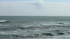 Cape Town, Bakoven, Ocean Horizon Waves and Seaweed Stock Footage
