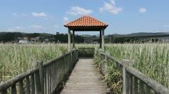 Spain Galicia Ria wildlife viewing stand Stock Footage