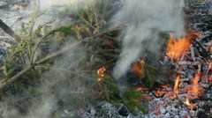 Fire in the garden background Stock Footage