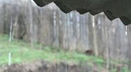 Rain falling from the eave Stock Footage