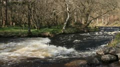 White water rapids, on a Welsh mountain stream Stock Footage