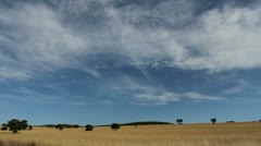 La Mancha wheat and sky Stock Footage