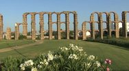 Stock Video Footage of Merida Aqueduct of the Miracles flowers