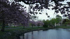 Charles river hatch shell bkg Stock Footage