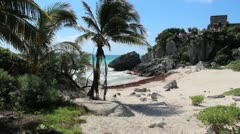 Sandy Beach w/ Palm tree, Ocean, and MayanTemple - stock footage