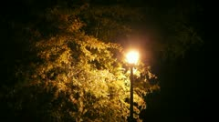 Stock Video Footage of Nighttime Lamp Zoom