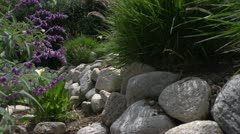 Landscaping with purple flowers and smooth boulders Stock Footage