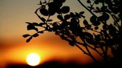 Beautiful sunset (timelapse) Stock Footage