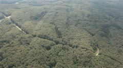 Aerial shot of woods in Poland Stock Footage