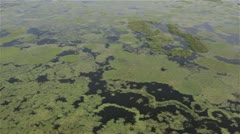 Aerial shot of woods and lakes in Poland Stock Footage