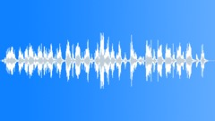 Lap 2 Sound Effect