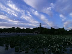 Beihai park moning Stock Footage