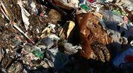 Illegal dump Stock Footage