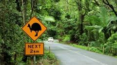 Cassowary sign, Queensland, Australia Stock Footage
