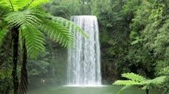 Millaa Millaa Falls, Queensland, Australia Stock Footage