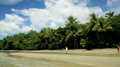 Cape Tribulation, Queensland, Australia Stock Footage