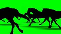 ANIMATED GALLOPING HORSES Stock Footage
