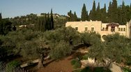 Olive garden in  gethsemane-crane shot Stock Footage
