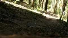 Mountain bike in the forest Stock Footage