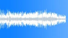 Flute bossa - stock music