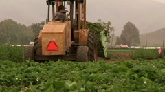 Farm tractor working food producting cutaway transition immigration outdoors Stock Footage