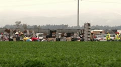 farm workers farming moving boxes food production immigration reform jobs work - stock footage