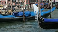 Stock Video Footage of Gondolas moored on the Grand Canal, Venice, Italy