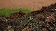Stock Video Footage of Compost, with a field behind