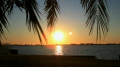 Timelapse of Sunset over Bay framed by Palm Trees - stock footage