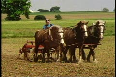 Amish girl drives team of plow horses in field, near Lancaster Pennsylvania Stock Footage