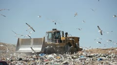 Large truck compacting trash at county landfil HD597 Stock Footage