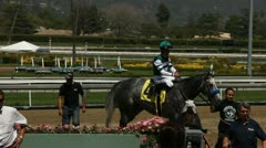 WINNIG HORSE IN WINNERS CIRCLE Stock Footage