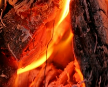 Flame in campfire - stock footage