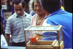 Paris,  Bird market, older woman arguing about price of a bird Stock Footage