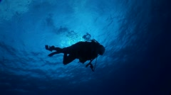 Diver Swims Near Surface Stock Footage