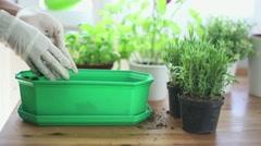 Gardeners hand in work glove put ground into a flower pot HD Stock Footage