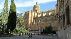 Salamanca cathedral 1 Stock Footage