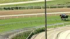 RACEHORSES ROUND FINAL TURN ON TURF Stock Footage