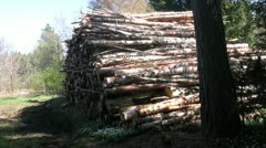 Stack of lumber Stock Footage