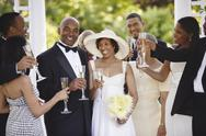 Stock Photo of wedding guests toasting bride and groom