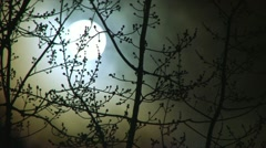 Glowing Night Moon Stock Footage