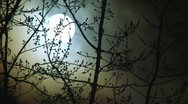 Glowing Night Moon Stock Footage
