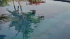 Palm tree reflection pool Stock Footage