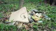 Lots of debris in the woods Stock Footage